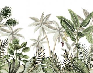 Фотообои Пальмы тропики 26674