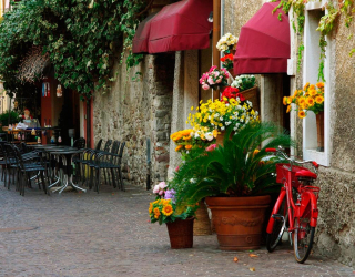 Фотообои Кафе на улочке с цветами 11212