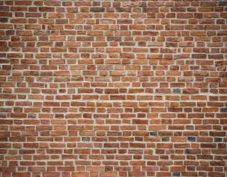Фотообои Оранжево-белая кирпичная стена 21175