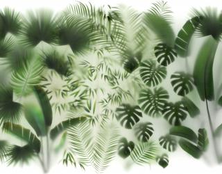 Фотообои Тропические листья за стеклом 27571