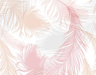 Фотообои Розовые векторные перья 22771