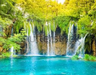 Фотообои Водопад, деревья 455907907