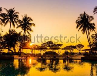 Фотообои Пальмы, закат 432289843