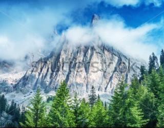 Фотообои Гора, лес 455798275