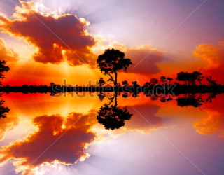 Фотообои Африка 126202511