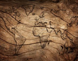 Фотообои Карта из дерева 22410