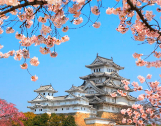 Фотообои Япония 6650