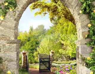 Фотообои желтые розы на каменной арке 21459