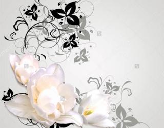 3д фотообои Цветы 282538850