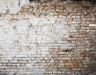 Фотообои Старая кирпичная стена 20420
