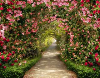 Фотообои Арка из цветов 22270