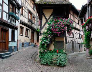 Фотообои Эгисхайм - коммуна во Франции 11214