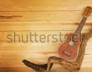 Фотообои Гитара 429632437