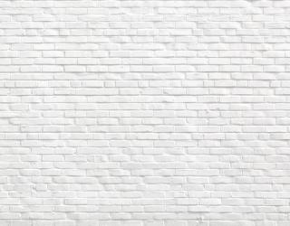 Фотообои Белая стена 21119