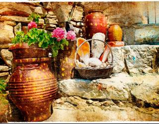 Фотообои Цветы в горшках 2513