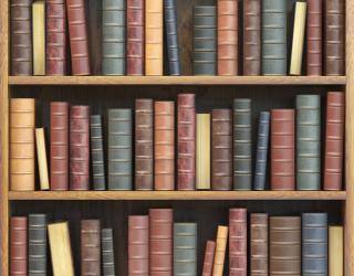 Фотообои Книжные полки 22808