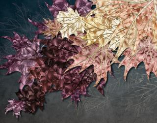 Фотообои Кленовые листья 23822