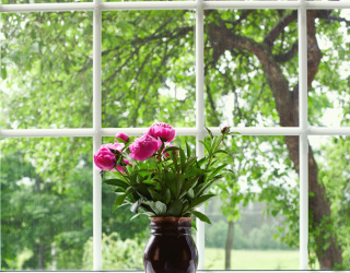 Фотообои Ваза у окна 22661