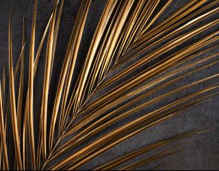 Фотообои Ветка пальмы золотая 26679