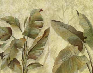 Фотообои Банановые листья  а156