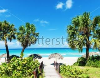 Фотообои Остров, пальмы 373884160