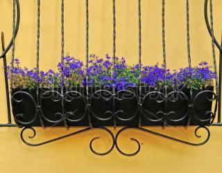 Фотообои Цветы 451359493