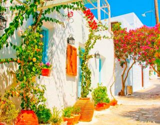 Фотообои Цветы на улочке, Греция 7790