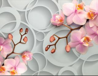 Фотообои Розовые орхидеи 16420