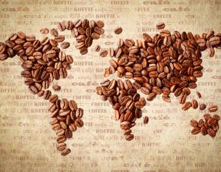 Фотообои Карта из кофе 20216