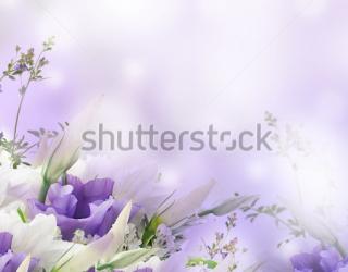 Фотообои Цветы 117637585
