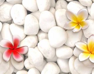 Фотообои 3D цветы  17618
