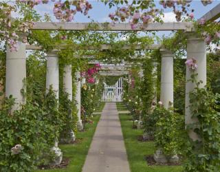 Фотообои Колонны в саду 11156