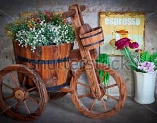 Фотообои Цветы, велосипед 157497014